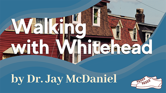 Walking with Whitehead - featured image - home page - 640x360