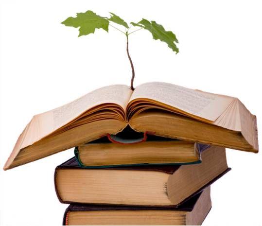 eco-education