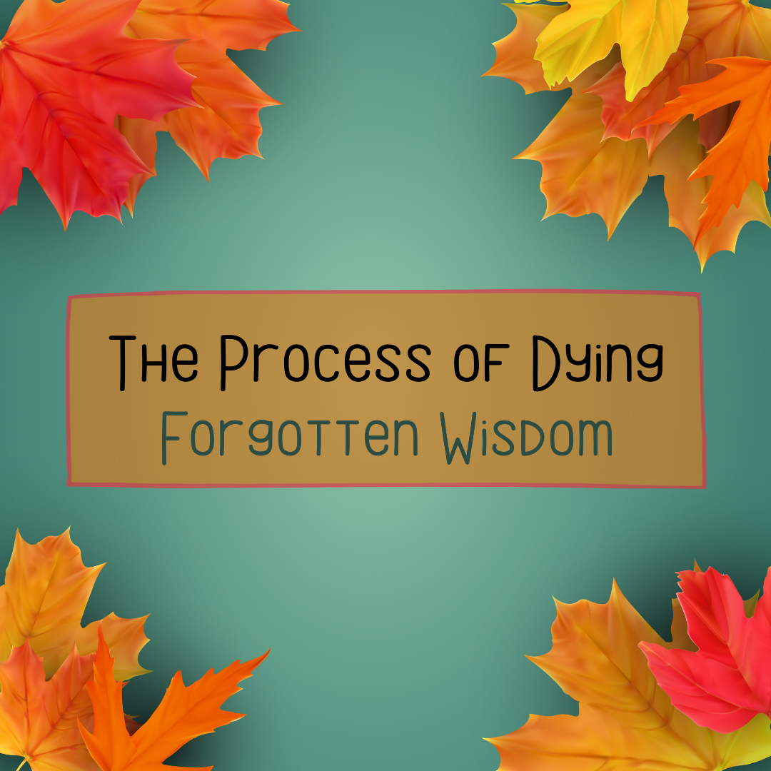 The Process of Dying - featured image - title only